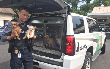Photo of Loudoun Chief of Animal Control with dogs
