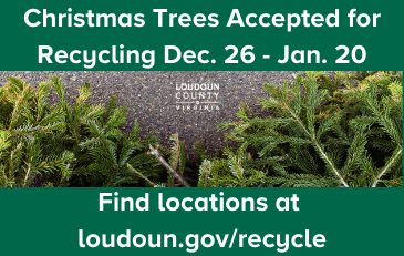 Link to information about Christmas Tree recycling and other recycling programs